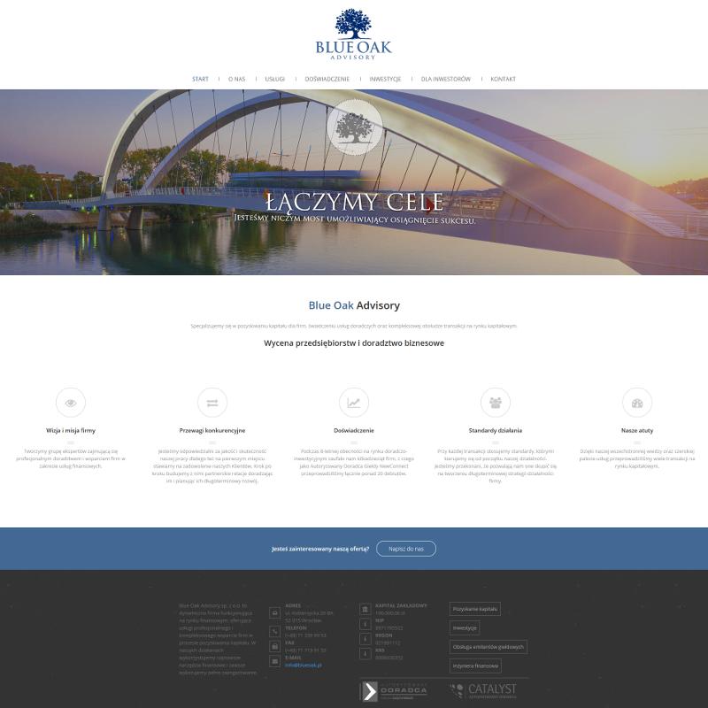 Profesjonalna strona internetowa dla firmy